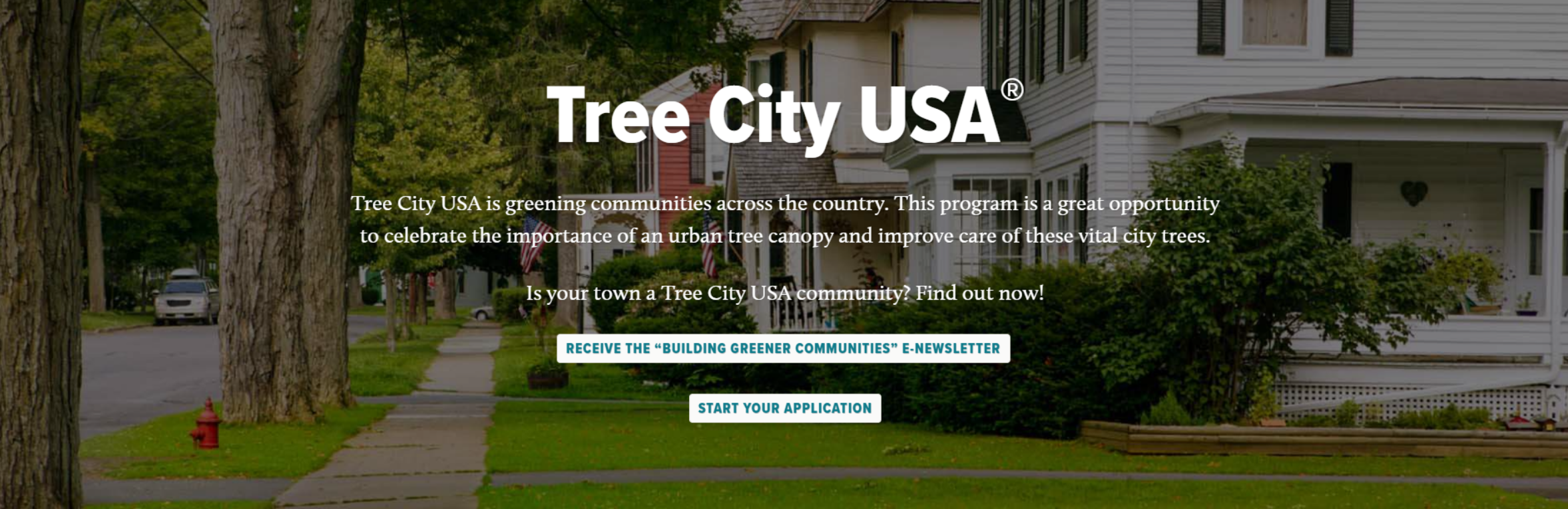 what is tree city usa