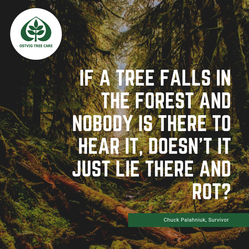 If a tree falls in the forest and nobody is there to hear it, doesn't it just lie there and rot?